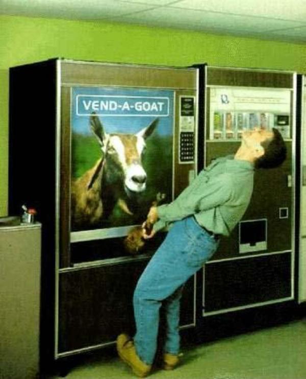 Goat vending
