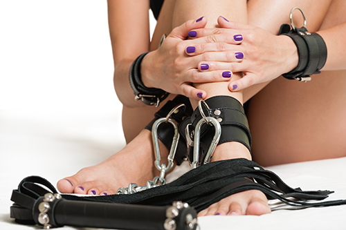 dortmund swinger leder harness
